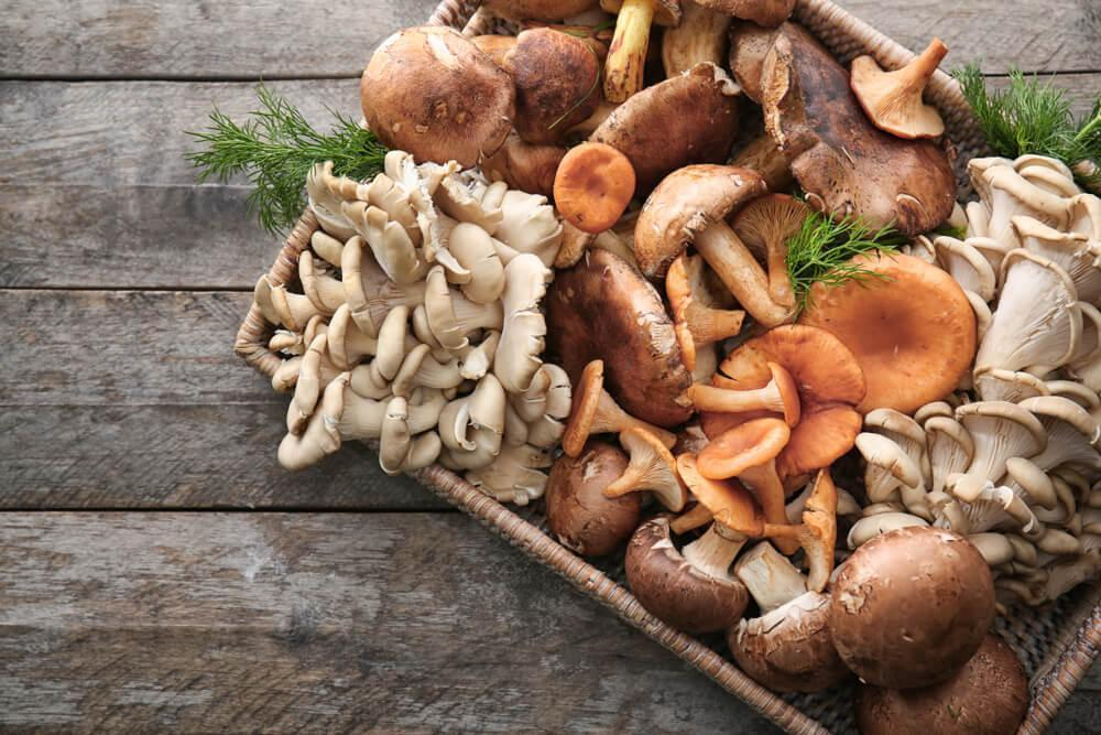 Mushrooms on tray